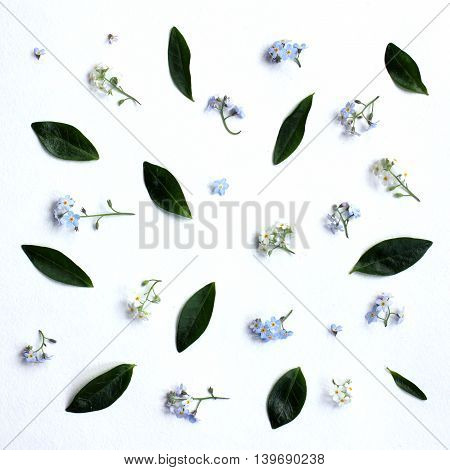 pattern of small flowers and green leaves top view / Spring background with flowers