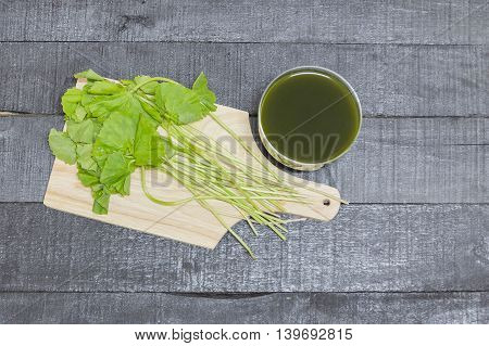Asiatic water herbal medicinal properties the background