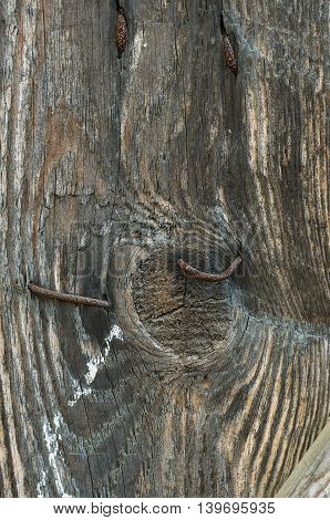 Old wooden planks texture with aging effects and aged nails
