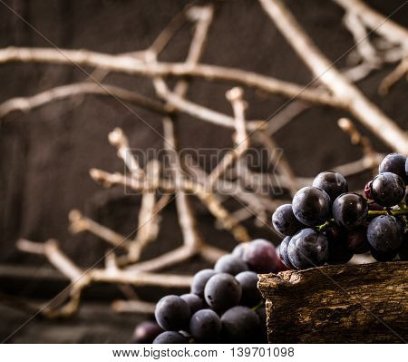 Fresh BLACK grapes on wood. Autumn fruit