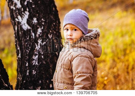 Little boy walking in autumn forest among the yellow leaves and grass. The October sunny day. Outerwear jacket and hat.
