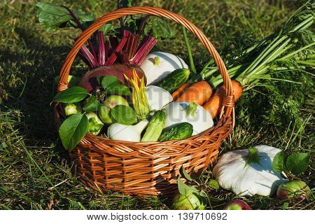 Different Vegetables In The Basket Outdoors