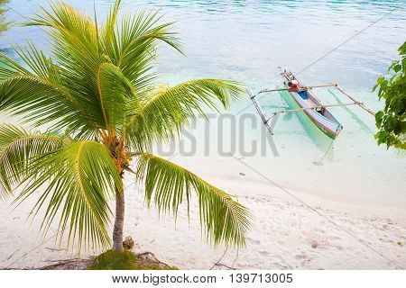 Photo Natural Wood Long Tail Boat Parked Caribbean Ocean Beach Island. Clear Blue Water Green Palm Background. Horizontal