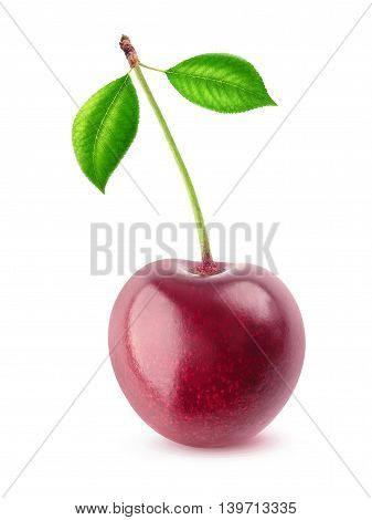 One Isolated Cherry