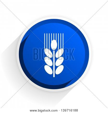 grain flat icon with shadow on white background, blue modern design web element