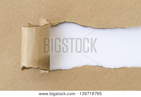 Blank torn paper. Write your message under torn paper.