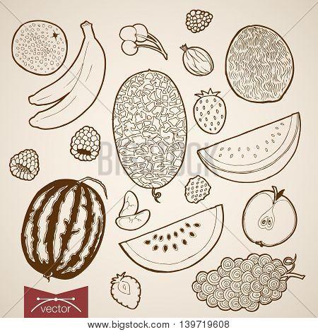 Engraving vintage hand drawn vector fruit food strawberry Sketch