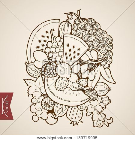 Engraving vintage hand drawn vector fruit grapes cherry Sketch