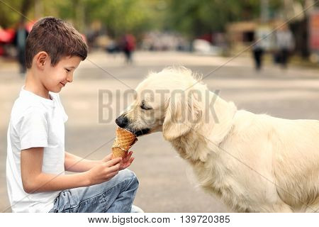 Small boy feeding ice-cream cute dog on street