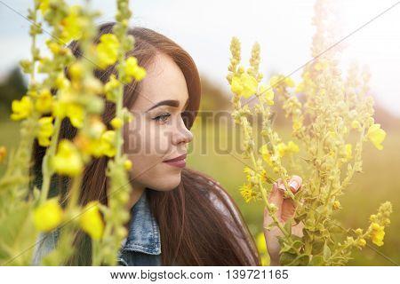 Beautiful Girl In A Meadow In The Morning