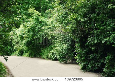 Botany park in spring