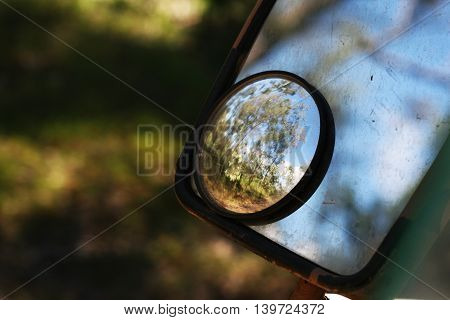 Reflection of the Daintree Rainforest in Tropical North Queensland, Australia