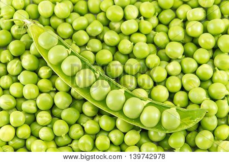 Fresh Raw Organic Peas Ready For Cooking