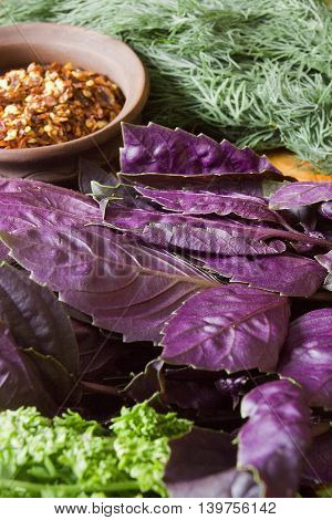 Vegetables and fresh herbs on the wooden table