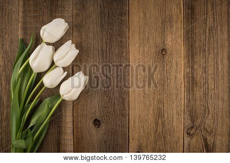 White tulips on rustic wooden background White tulips on rustic wooden background