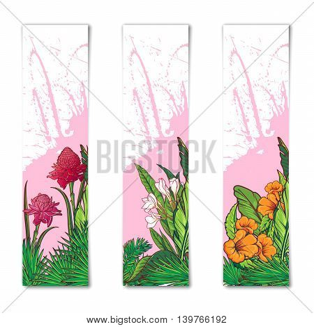 Set of 3 Tropical Floral vertical banners. Banana tree leaves, exotic flowers. sticker, flyer or banner design template. EPS10 vector illustration