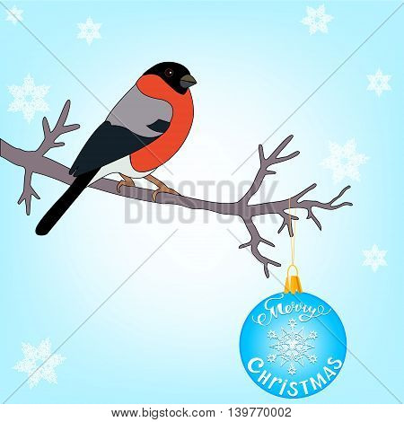 bullfinch sitting on a branch decorated with Christmas ball