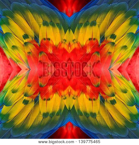 Colorful Background Made Of Of Scarlet Macaw Bird's Wing, Exotic Texture