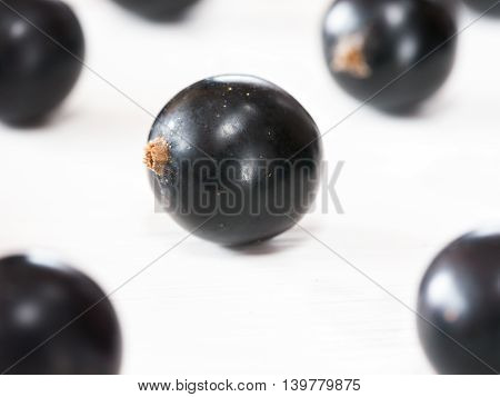 Fresh black currants on white wooden background. blackcurrants close up. Shallow DOF
