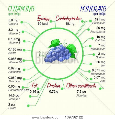 Nutritional value of grapes. Vector infographic elements