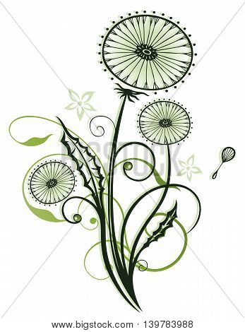 Spring time flowers, dandelion with leaves, vector design.