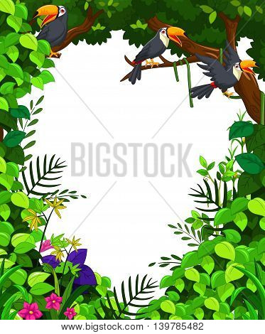 funny toucan bird in green forest background