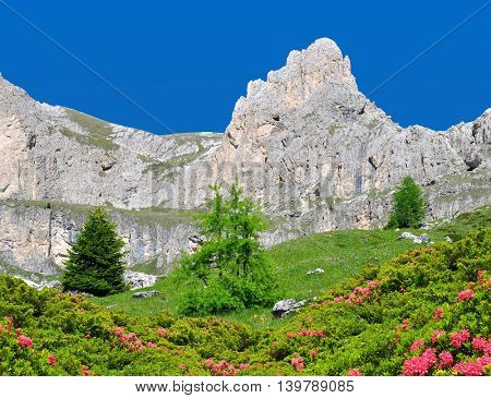 Beautiful mountain landscape in sunny day. Valle del Vajolet in Dolomites,Italien Alps