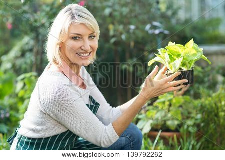 Portrait of confident female gardener holding potted plant while working at greenhouse
