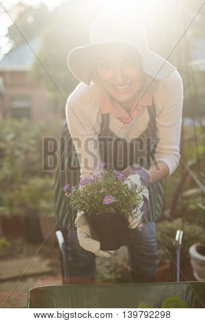 Portrait of female gardener holding potted plants over wheelbarrow at greenhouse