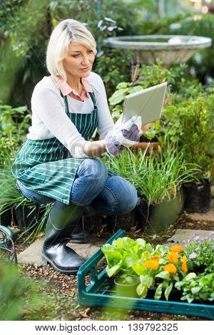 Mature female gardener using digital tablet while working at greenhouse