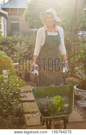 Portrait of female gardener carrying plants in wheelbarrow at greenhouse