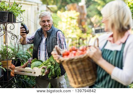 Male gardener with vegetables looking at woman outside greenhouse