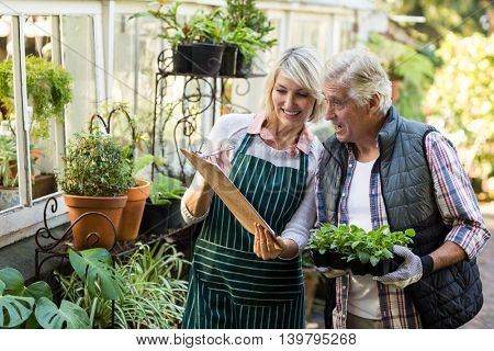 Woman showing clipboard to male gardener outside greenhouse