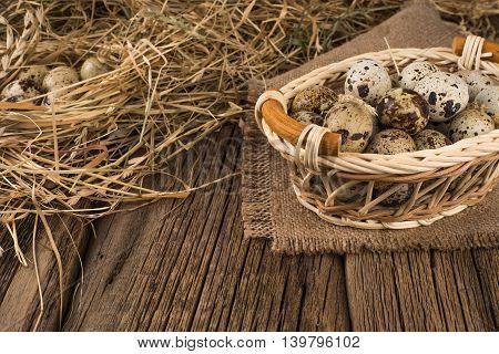Raw quail eggs.Raw quail eggs.Raw quail eggs