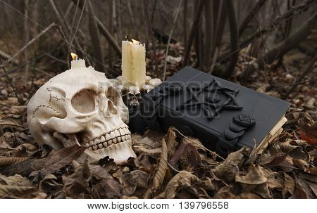 Black magic in the forest: mystic book, skull and candles