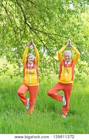 Happy fit senior couple practicing yoga in  park