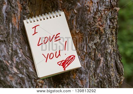 Love Message On Notebook In Forest Pine Bark