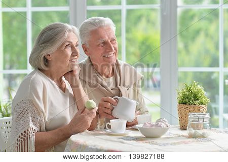 Portrait of a happy senior couple drinking tea