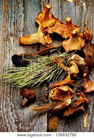 Arrangement of Various Dried Mushrooms with Forest Chanterelles Porcini Boletus Mushrooms and Dry Grass Stems and Leafs closeup in Rustic Wooden background