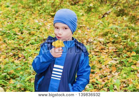 A boy stands in the forest with a thoughtful face looking at the camera and holding a mushroom chanterelle