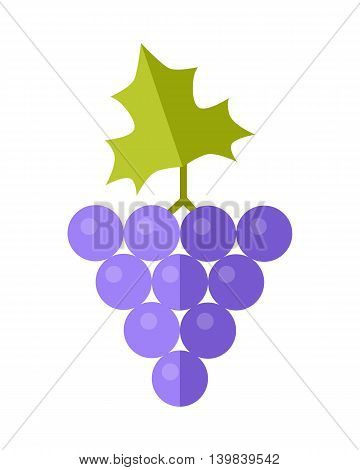 Grape vector in flat style design. Fruit illustration for conceptual banners, icons, mobile app pictogram, infographic, and logotype element. Isolated on white background.
