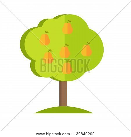 Pear tree with fruits icon. Vector illustration in flat style design. Plant pattern for environment, gardening, farming, business growing concepts. Isolated on white background.