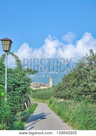 Apple Plantation and View to Village of Montiggl or Monticolo near Appiano at Lake Caldaro,South Tirol,Italy