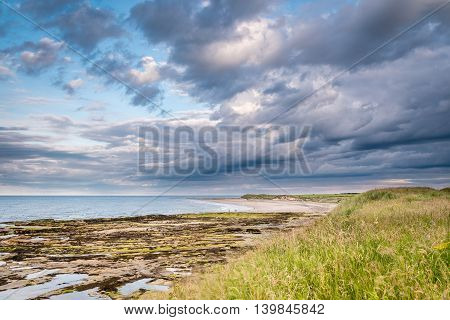 Low Hauxley beach, just south of Amble on Northumberland's coastline, with sand, rocks and cloud building in the sky
