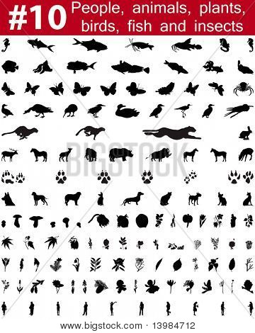 Set # 10. Big collection of collage vector silhouettes of people, animals, birds, fish, flowers and insects