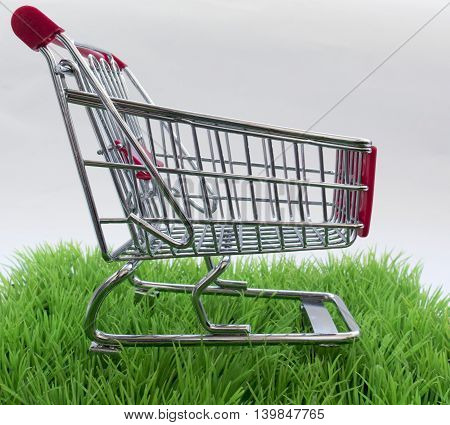 Original Background On Purchases With Green Grass And Shopping Basket