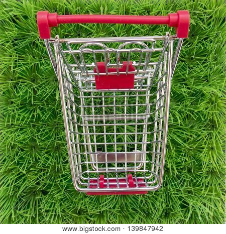 Shopping Carts On A Background Of Green Lawn, Shop For Outdoor Activities