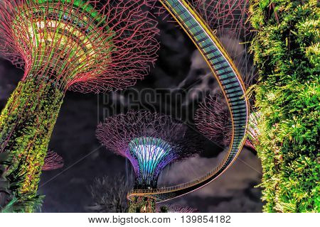 Supertree Grove In The Gardens By The Bay Of Singapore