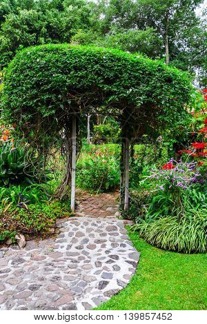 Stone path leading into a beautiful Mexican garden