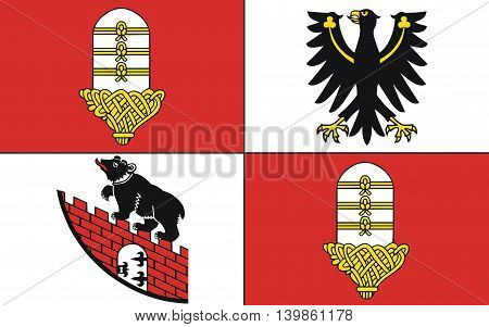 Flag of Salzland is a district in the middle of Saxony-Anhalt Germany